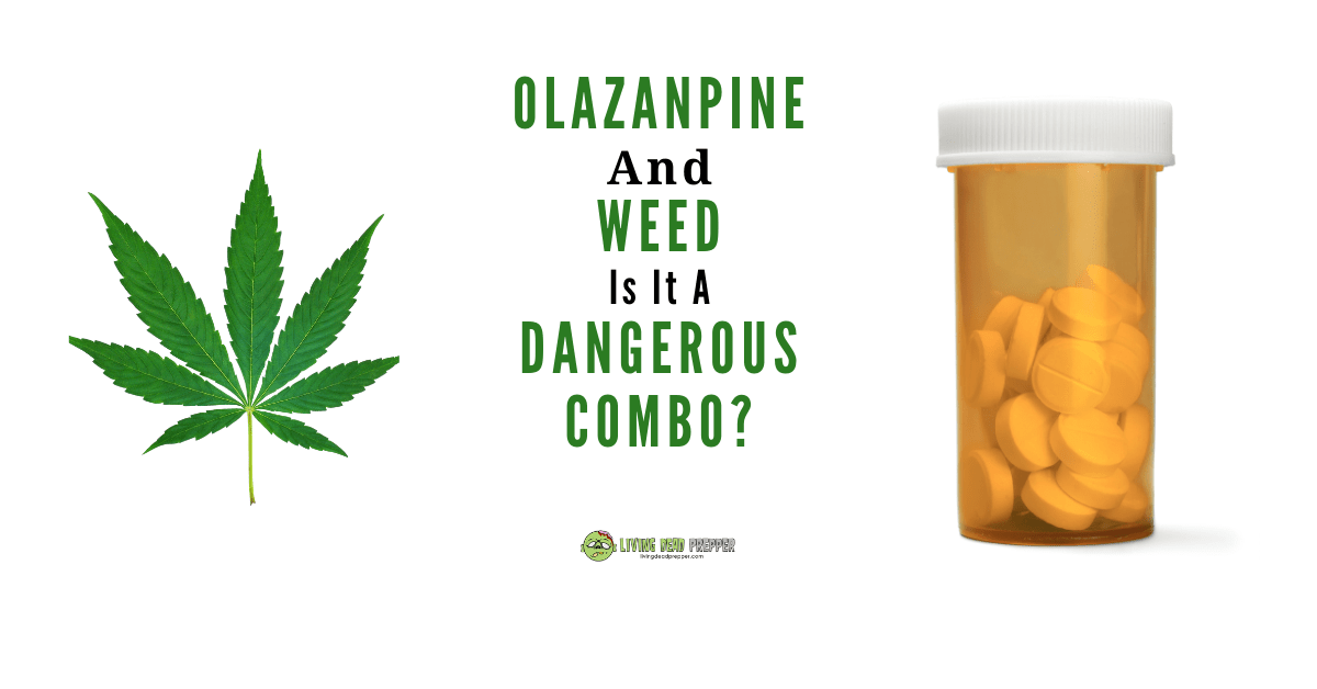 Olanzapine and Weed