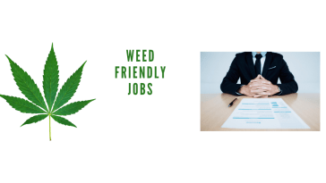 420 Friendly Jobs