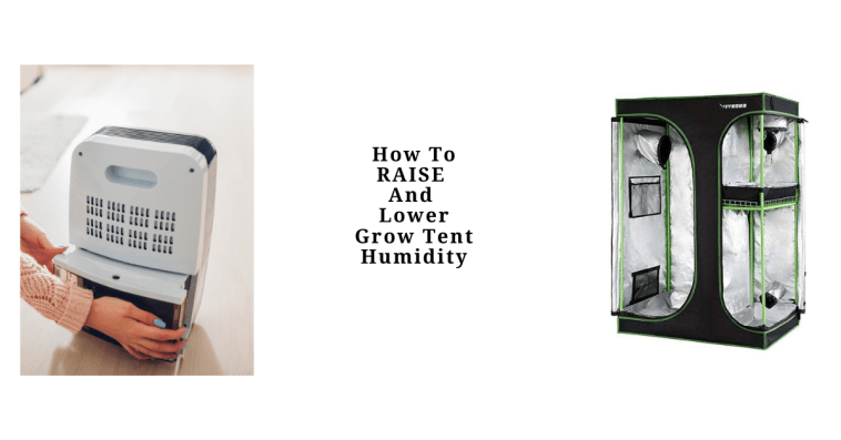 How To Raise and Lower Grow Tent Humidity