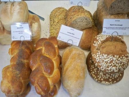 Bread breeds