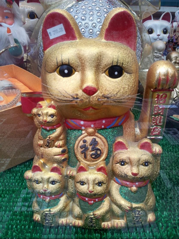 lucky-cat.jpg