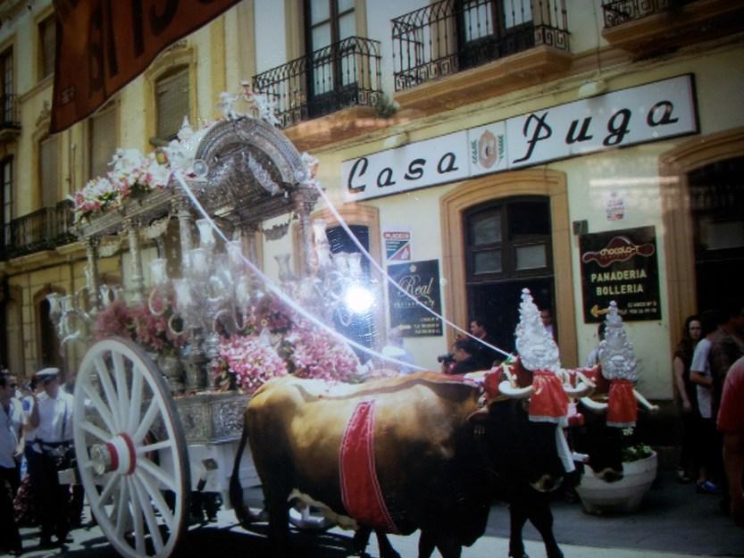 Cow cart outside Puga