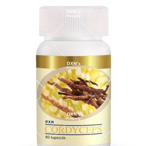 DXN Cordyceps