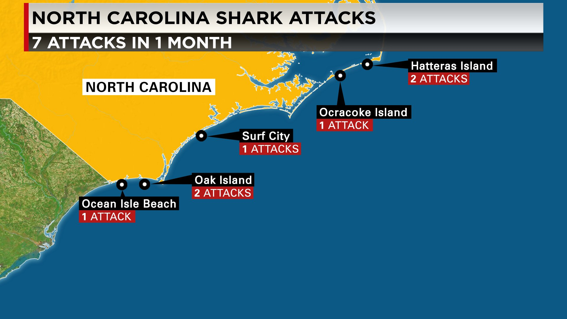 What S Behind Increase In Shark Attacks Off The Carolinas Gantnews Com