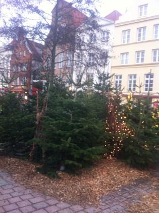 Lübecker Weihnachtsmarkt, Urlaubstipp, Familienweihnachtsmarkt