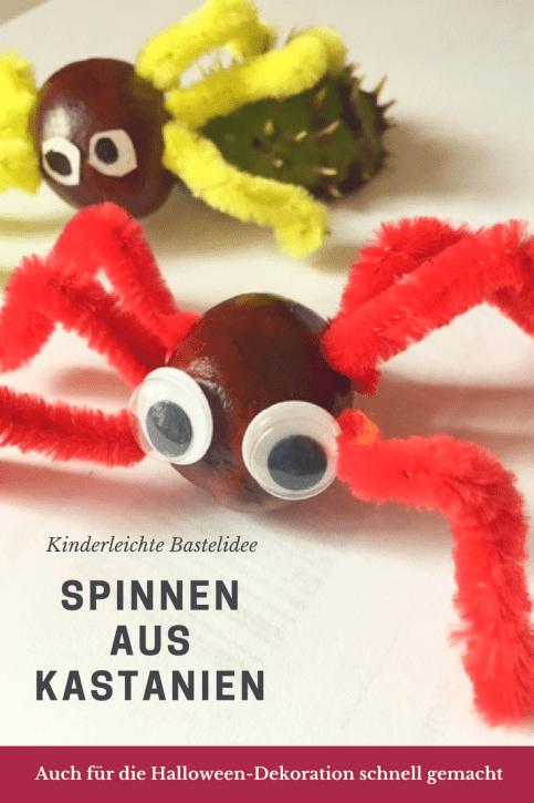 Basteln mit Kastanien: Spinnen mit Pfeifenreinigern und WAckelaugen. Auch für Halloween Dekoration schnell gebastelt - auch für Kinder unter 3. Kinderleichtes DIY für den Herbst. #basteln #kastanien #halloween
