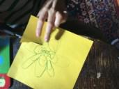 Eine Seerose Basteln Deren Blüte Sich Alleine öffnet Spannendes