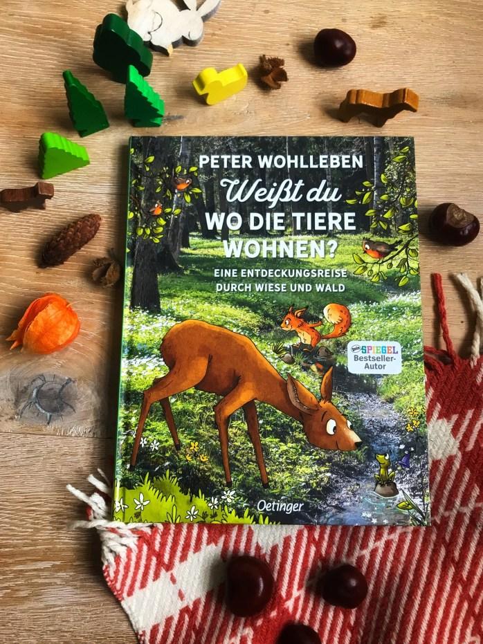 Buchtipp wohlleben für Kinder - tierbuch Kinderbuch über Tiere und Wald
