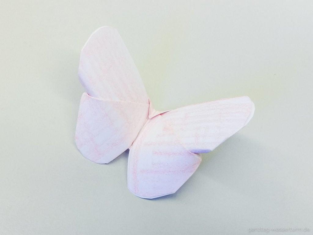 ganztag wasserturm 20200421 Schmetterling Bild 12 keine nutzung ohne erlaubnis
