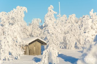 lapland winter