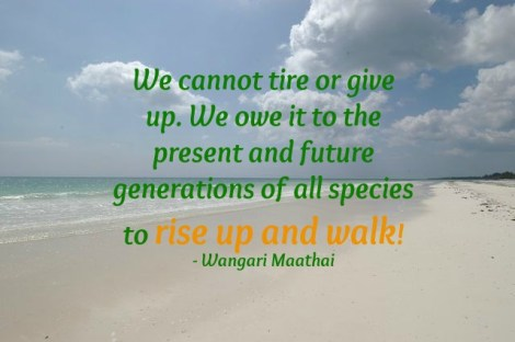 Image with quote by Wangari Maathai - We cannot tire or give up. We owe it to the present and future generations of all species to rise up and walk!