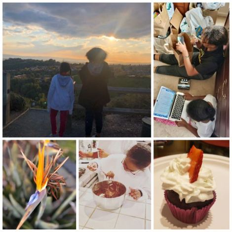 Collage of two kids looking at the sunset, working on a computer taking inventory of feminine hygiene products, and baking. Also image includes beautiful yellow and purple flower and lovely cupcake.
