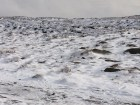 Bleaklow Head Snow