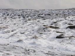 Bleaklow Head Snow