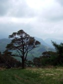 Place Fell from Great Mell Fell