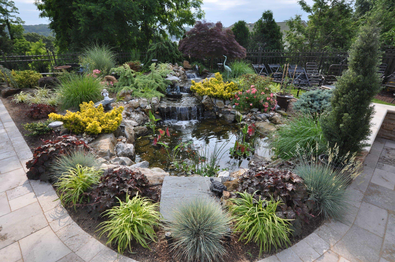 Patio Adjacent Fish Pond & Landscape Design by Gappsi