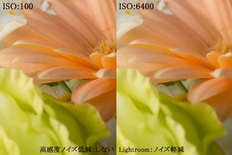 ISO高感度設定時におけるノイズ低減を「Adobe Photoshop Lightroom」と「カメラの高感度ノイズ低減」で比較
