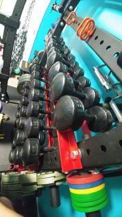 Jim & Holly Badass Home Gym Garage Gym Lab 4