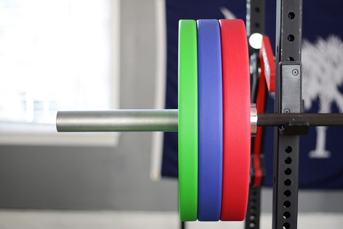 Vulcan Bumper Plates Urethane Loaded