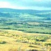Is Land in Melanesia Being Mobilised?