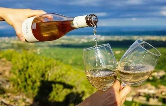 日本語ガイド同行で知られざるオーストリアワインをたっぷり満喫!ウィーン、ランゲンロイス、シュタイヤマルク5泊7日・オーストリア旅行モデルプラン