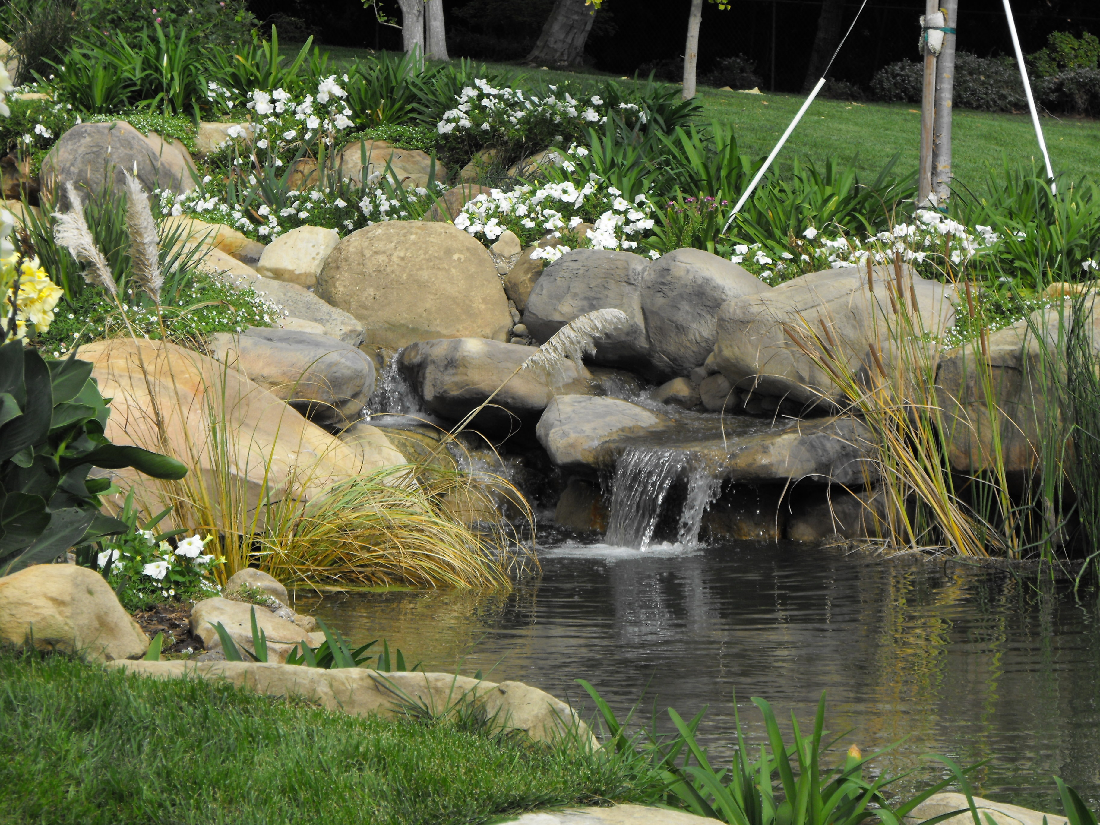 Ponds | Garcia Rock And Water Design Blog on Small Backyard Pond With Waterfall id=42356