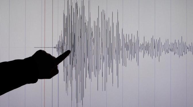 Gempa Bumi Tektonik Guncang Flores Timur, Goncangan Hingga Rote