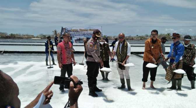 Panen Garam dan Rumput Laut di Raijua, Gubernur VBL Cari Pasar bagi Petani