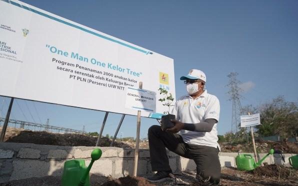 'One Man One Kelor Tree' PLN Tanam 2 Ribu Anakan Kelor di Hari Listrik Nasional