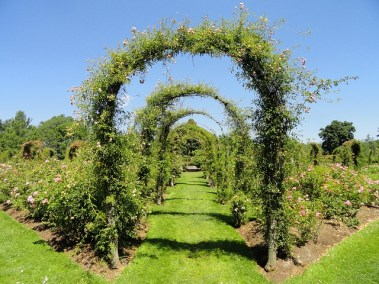 Gartenkränze