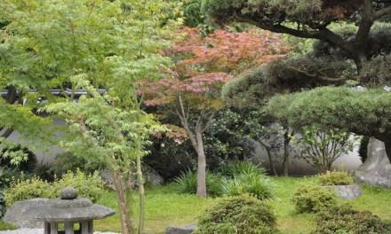 Japanischer Garten in Bielefeld: Impressionen