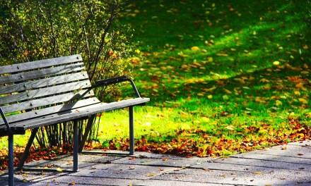 Gartenmöbel für die Saison fit machen