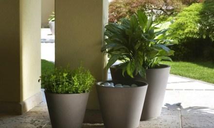 Pflanzkübel und Blumenkübel für den Garten