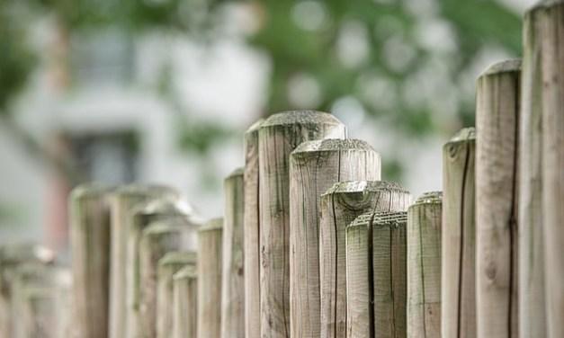Gartenzaun bauen – oder bauen lassen?