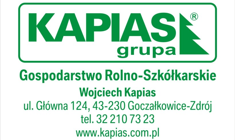 Cooperation with the company – Grupa Kapias