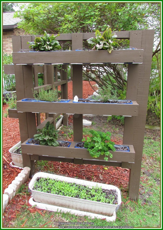 Vertical Herb Garden - Garden.org on Backyard Patio Landscaping id=92058