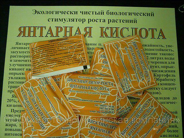 yantarnaya-kislota.jpg
