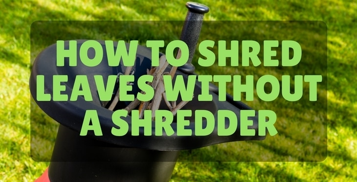 How Shred Leaves Without Shredder