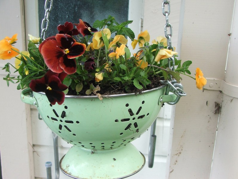 upcycling ideas, colander planter, upcycled colander, hanging colander planter