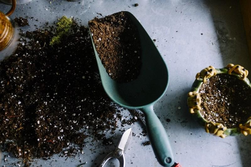 permaculture garden, permaculture garden soil, soil health, healthy soil, building good soil