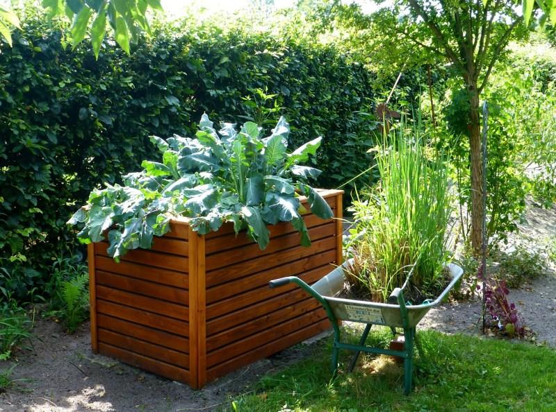 high raised garden bed