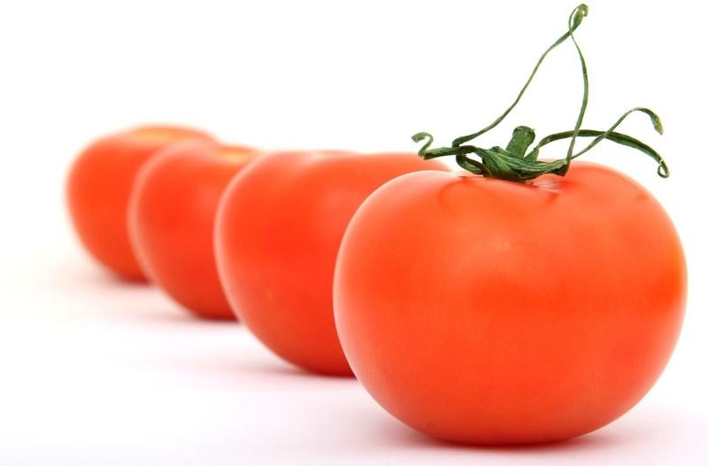 heirloom and GMO tomatoes