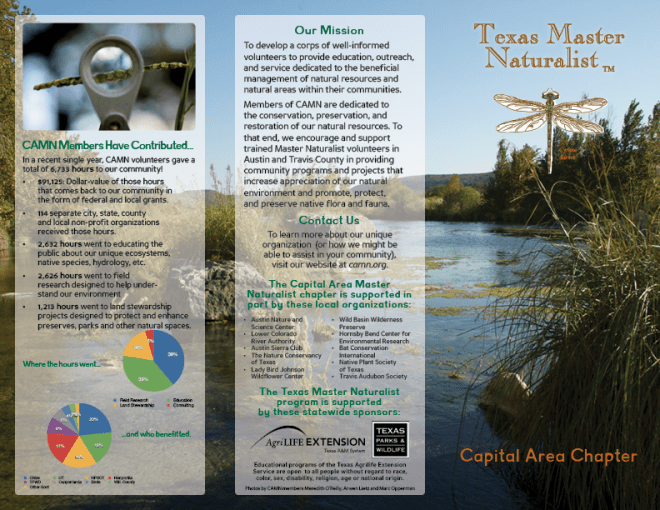 Brochure design for my non-profit