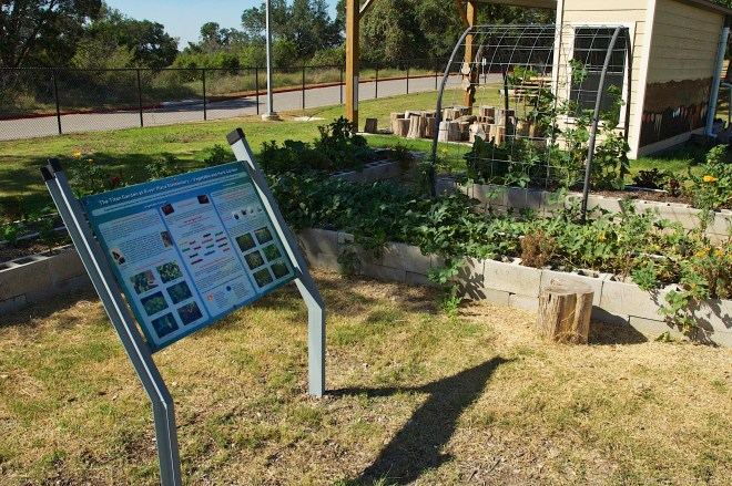 Interpretive garden sign placement