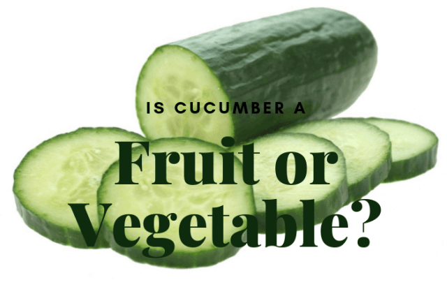 Is cucumber fruit or vegetable