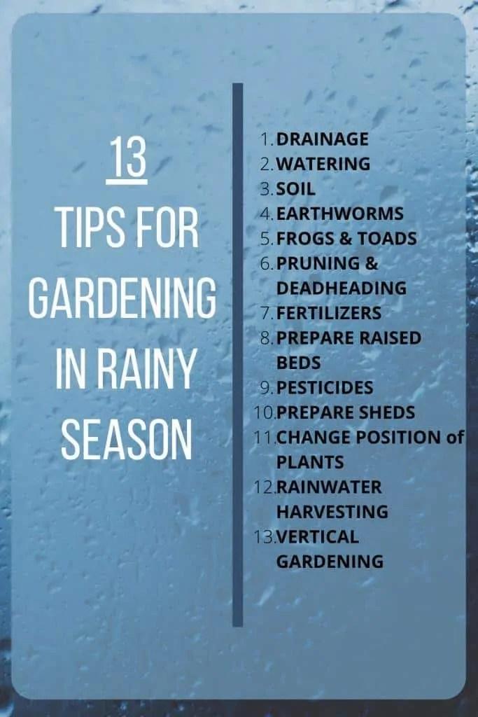 13-Tips for Gardening in Rainy Season