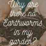 Why are there no earthworms in my garden