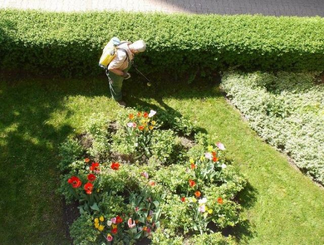 why gardeners fail-control-common-pests