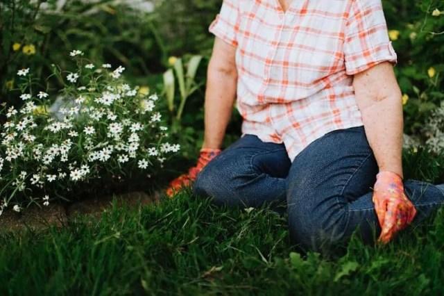 happy-gardeners