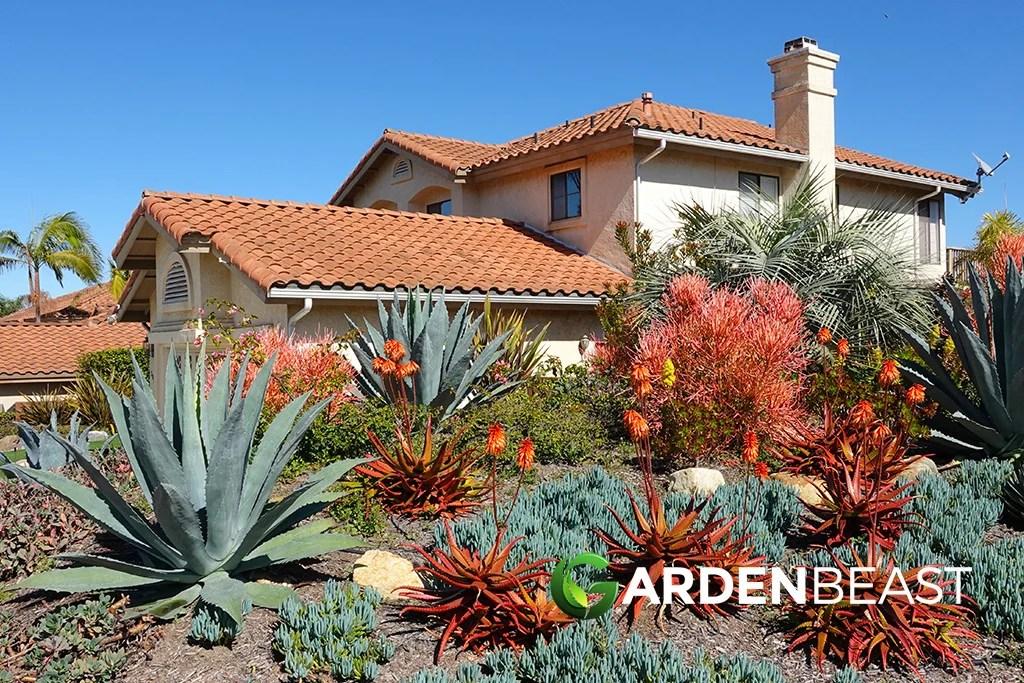 Desert Landscaping Ideas for Your Backyard: Complete Guide on Desert Landscape Ideas For Backyards id=63096